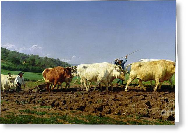 Pulling Greeting Cards - Ploughing in Nivernais Greeting Card by Rosa Bonheur