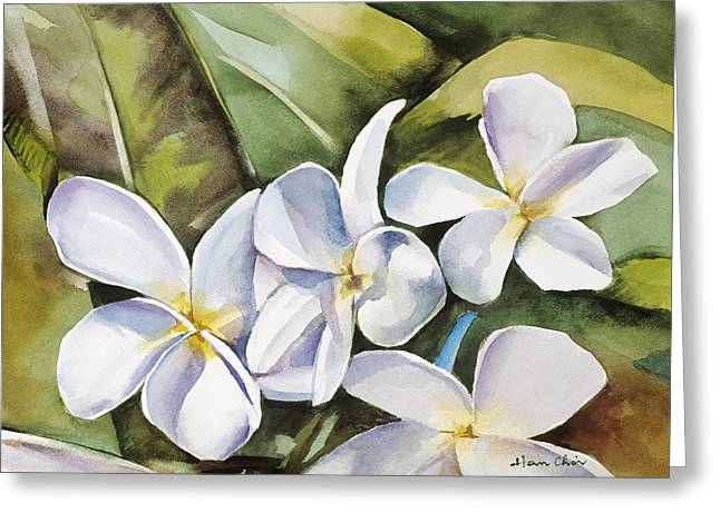 Art Medium Greeting Cards - Plumeria II Greeting Card by Han Choi - Printscapes