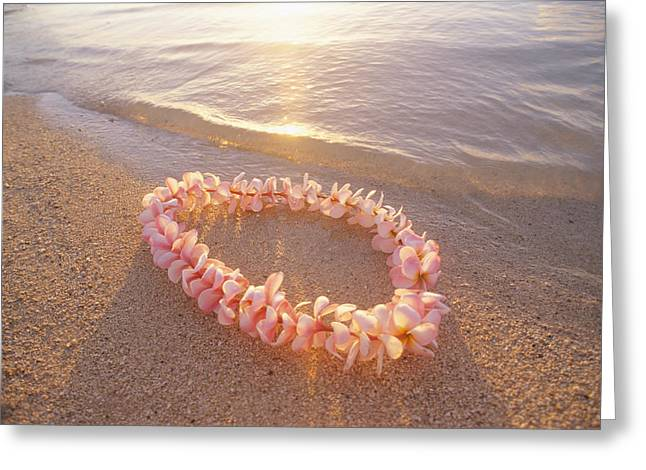 Lei Greeting Cards - Plumeria Lei Shoreline Greeting Card by Mary Van de Ven - Printscapes