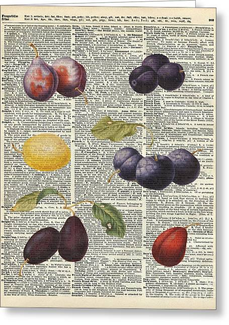 Peach Drawings Greeting Cards - Plums vintage illustration Over a Old Dictionary Page Greeting Card by Jacob Kuch