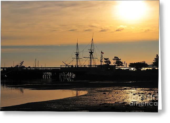 Mayflower Beach Greeting Cards - Plymouth Harbor Sunrise Greeting Card by Catherine Reusch  Daley