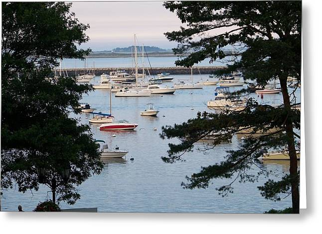 Plymouth Harbor Greeting Cards - Plymouth harbor Greeting Card by Victoria Walston