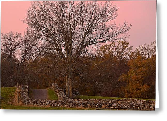 Bedford Hills Greeting Cards - Pocantico Trail Novemer Dusk Greeting Card by Bedford Shore Photography
