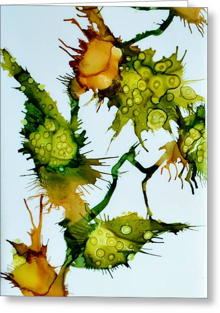 Nature Abstract Greeting Cards - Pods Greeting Card by Jennifer  Creech