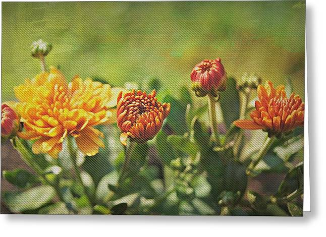 Breezy Greeting Cards - Poetry In Motion Greeting Card by Kathy Bucari
