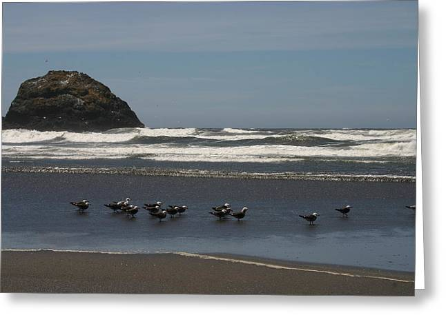 Poetry In Motion Greeting Card by Marie Neder