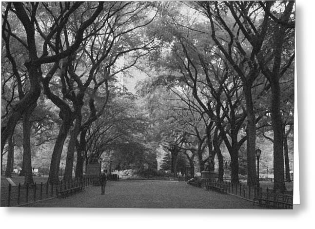 Central Greeting Cards - Poets Walk In Central Park Greeting Card by Christopher Kirby