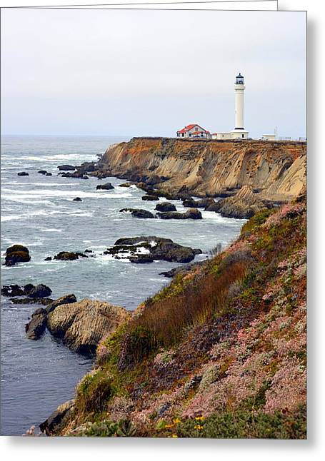 Point Arena Coast And Lighthouse Greeting Card by Carla Parris