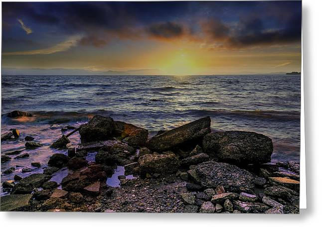 San Francisco Bay Greeting Cards - Point Emery Park Greeting Card by PhotoWorks By Don Hoekwater