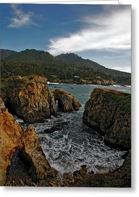 Point Lobos Greeting Cards - Point Lobos Greeting Card by Doron  Hanoch