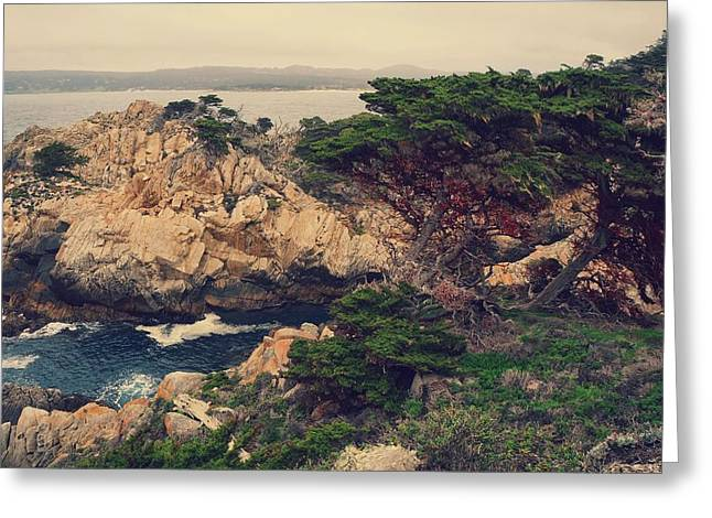 Point Lobos Greeting Card by Jack Ebnet