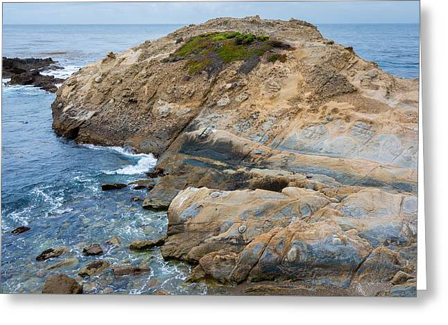Point Lobos Greeting Cards - Point Lobos Natural Reserve Greeting Card by Cristi Canepa