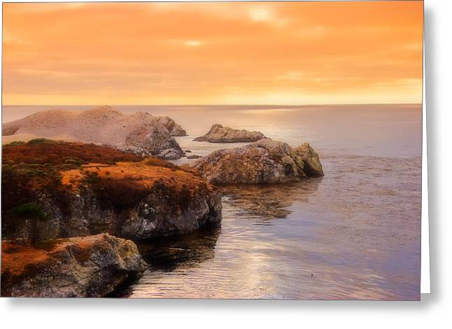 Point Lobos Photographs Greeting Cards - Point Lobos  Greeting Card by Utah Images