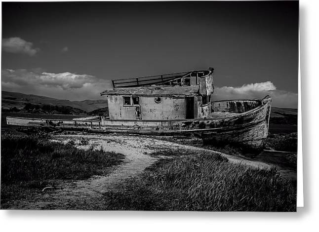 Point Reyes Black And White Greeting Card by Garry Gay