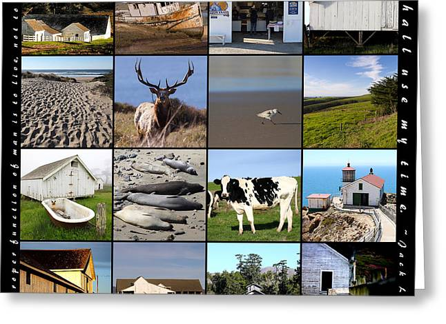 Home Decor Greeting Cards - Point Reyes National Seashore 20150102 with text Greeting Card by Home Decor