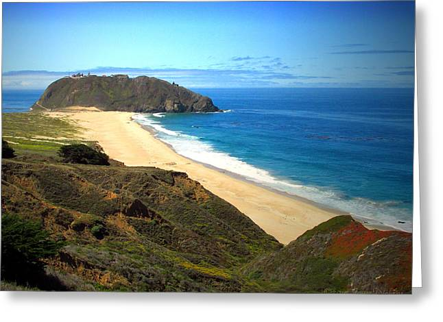 Big Sur Beach Greeting Cards - Point Sur Greeting Card by Joyce Dickens