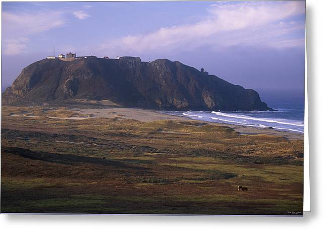 Point Sur Greeting Card by Soli Deo Gloria Wilderness And Wildlife Photography