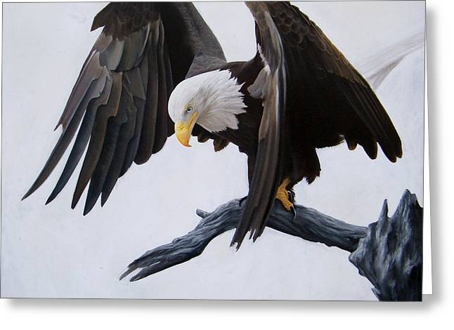 Eagle Pastels Greeting Cards - Poised Greeting Card by David Vincenzi