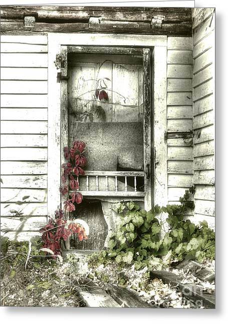 Rural Decay Digital Art Greeting Cards - Poison Ivy Greeting Card by Sari Sauls