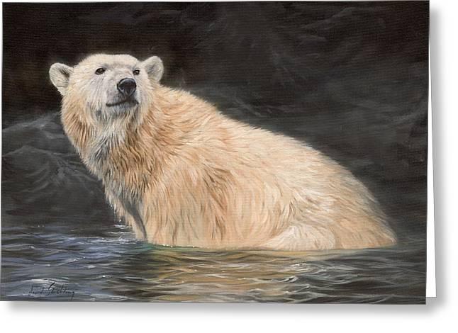 Polar Bear Greeting Card by David Stribbling