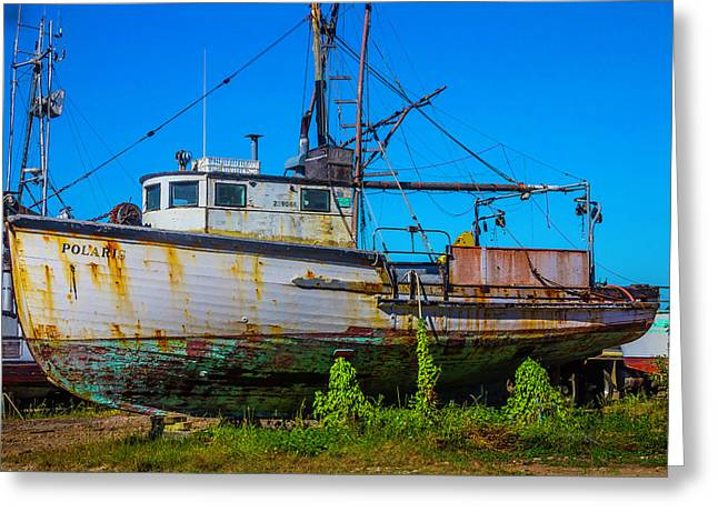 Polaris In Dry Dock Greeting Card by Garry Gay