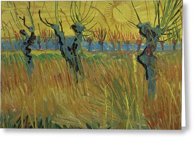 Arles Paintings Greeting Cards - Pollarded Willows and Setting Sun Greeting Card by Vincent Van Gogh