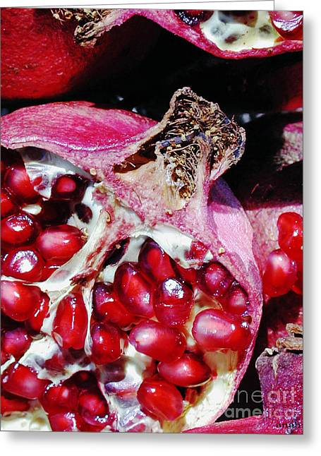 Fancy Eye Candy Greeting Cards - Pomegranate Greeting Card by Anahi DeCanio