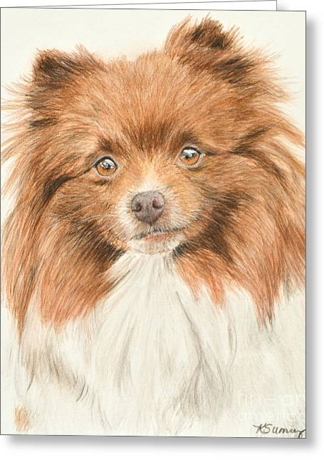 Doggy Pastels Greeting Cards - Pomeranian Orange Parti-colored Greeting Card by Kate Sumners