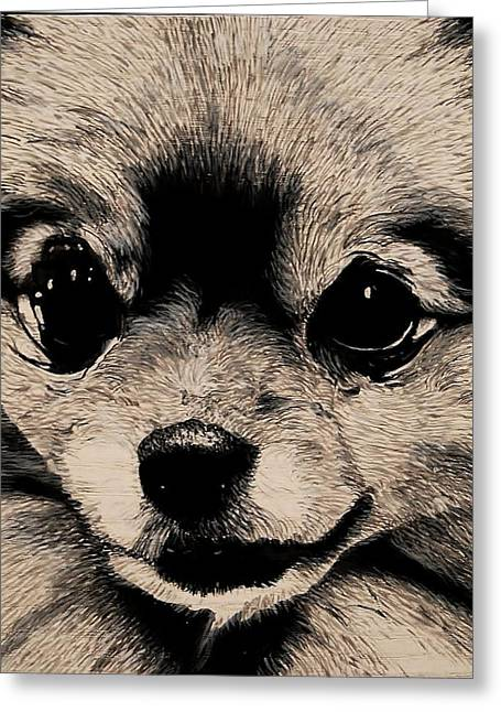 Doggies Greeting Cards - Pomeranian Greeting Card by Ron Greenlee