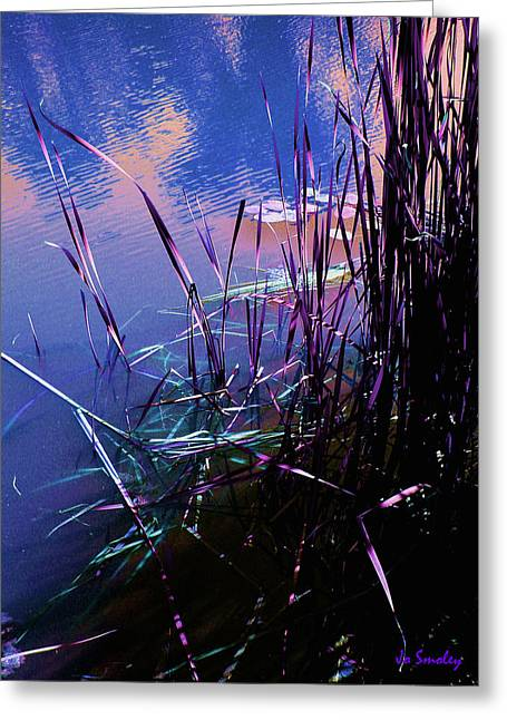 Lilly Pad Greeting Cards - Pond Reeds at Sunset Greeting Card by Joanne Smoley