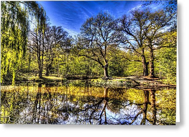 Reflecting Water Greeting Cards - Pond Reflections Greeting Card by David Pyatt