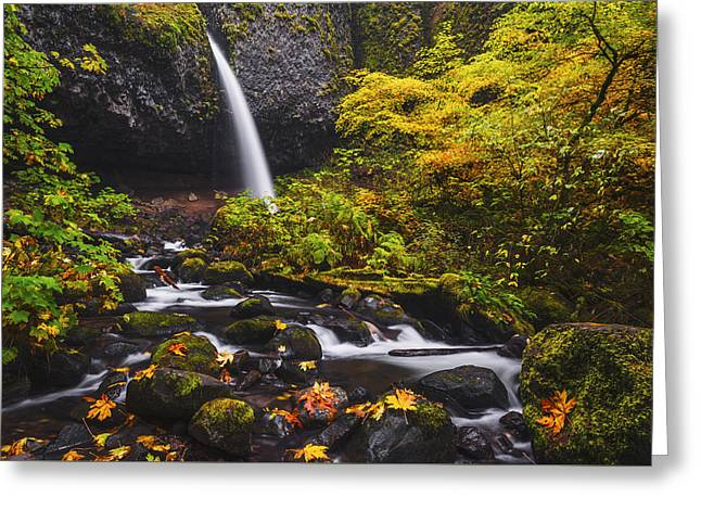 Overcast Day Greeting Cards - Ponytail falls autumn Greeting Card by Vishwanath Bhat
