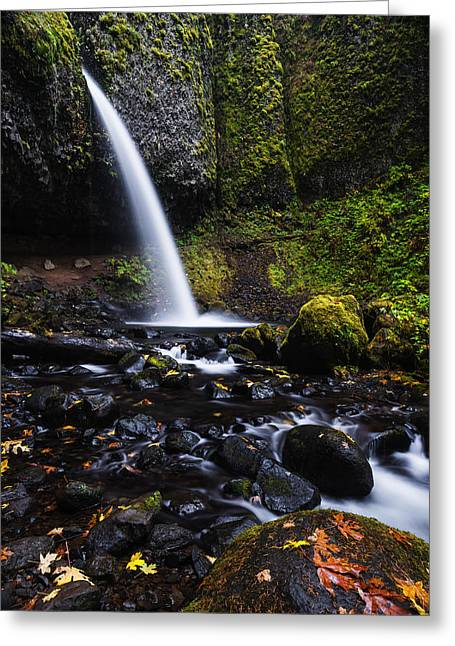 Overcast Day Greeting Cards - Ponytail Falls in Columbia River Gorge in Autumn Greeting Card by Vishwanath Bhat