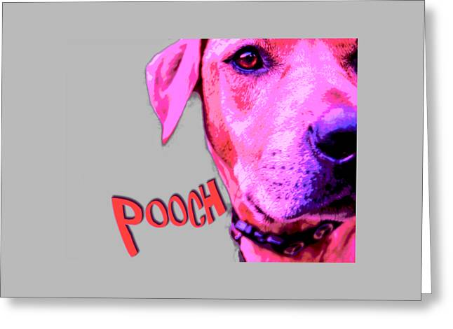 Doggies Greeting Cards - Pooch Greeting Card by Mim White