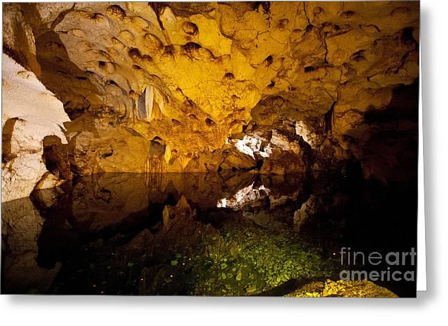 Watson Lake Greeting Cards - Pool of Water Green Grotto Caves Jamaica Greeting Card by Jason O Watson