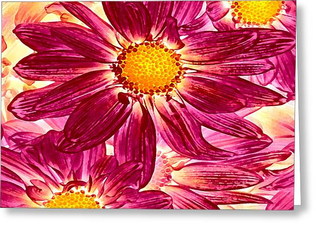Entryway Greeting Cards - Pop Art Daisies 14 Square Greeting Card by Amy Vangsgard