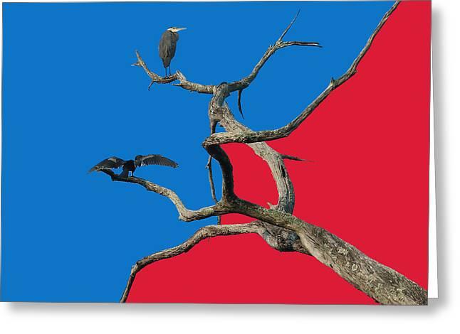 Grey Heron Greeting Cards - Pop Art Greeting Card by Robert Meanor