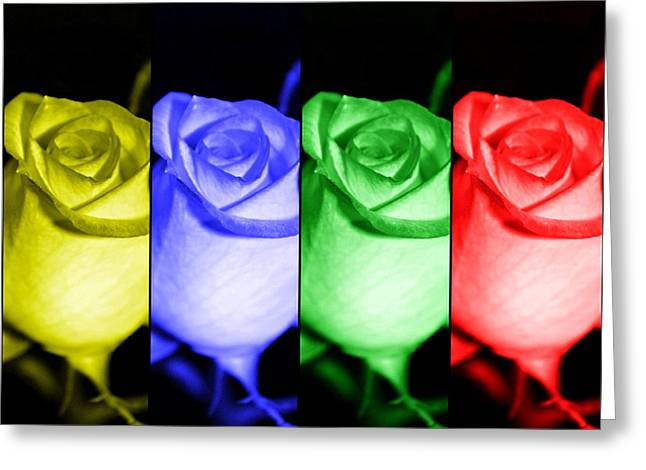 Rose Red City Greeting Cards - Pop Art Roses Greeting Card by Cathie Tyler