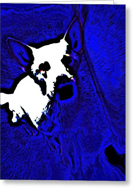 Puppies Digital Greeting Cards - Pop Art Shepherd Greeting Card by Heather Joyce Morrill