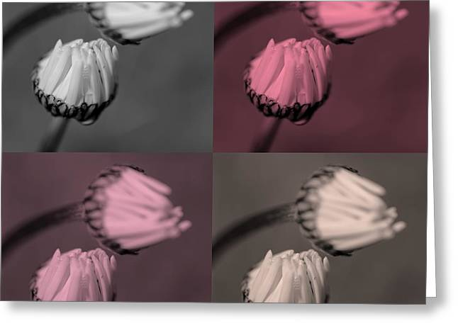 Various Digital Greeting Cards - Popart flowers  Greeting Card by Toppart Sweden