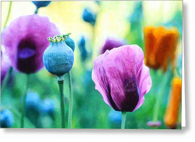 Landscape Greeting Cards - Poppies 1 Greeting Card by Lanjee Chee