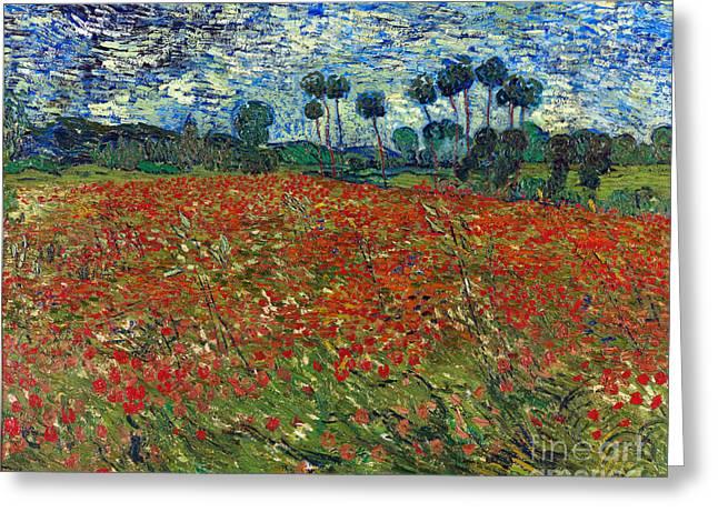 Poppy Field Greeting Card by Van Gogh