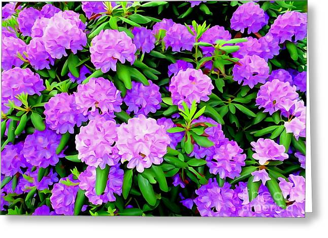 Nature Abstract Greeting Cards - Pops Of Purple Greeting Card by Ed Weidman