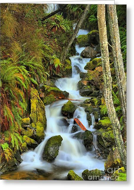 Port Alice Waterfall Greeting Card by Adam Jewell