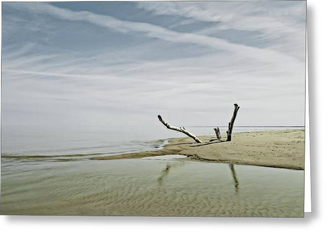 Best Ocean Photography Greeting Cards - Port Franks #2 Greeting Card by Jerry Golab