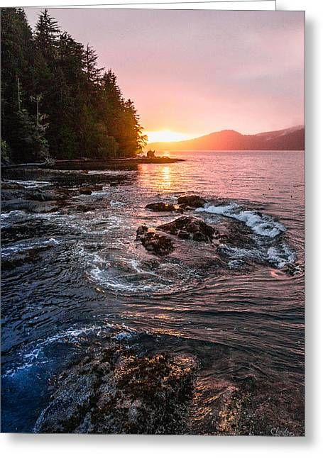 Sunset Prints Greeting Cards - Port Renfrew Evening Greeting Card by Claude Dalley