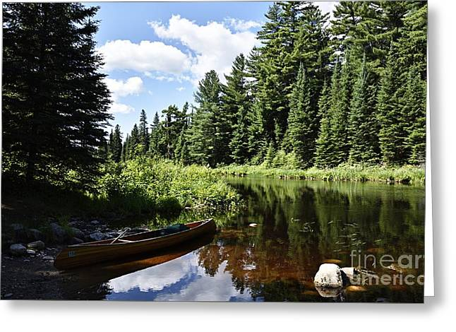 Portage Landing Along The Moose River Greeting Card by Larry Ricker