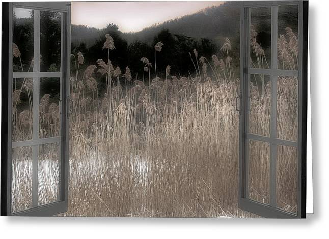 Wild Grass Greeting Cards - Portal Greeting Card by Mindy Sommers