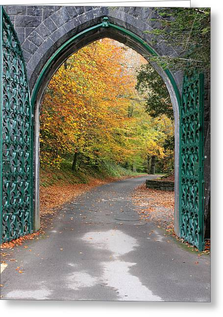 Portal Greeting Cards - Portal to the colorful autumn season Greeting Card by Pierre Leclerc Photography