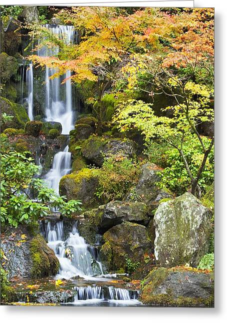 Fallen Leaf Greeting Cards - Portland Japanese Garden, Portland Greeting Card by Craig Tuttle